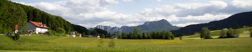 cropped-header_austria.jpg